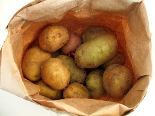 Как самостоятельно с помощью обычного картофеля освещать свой дом без электросетей