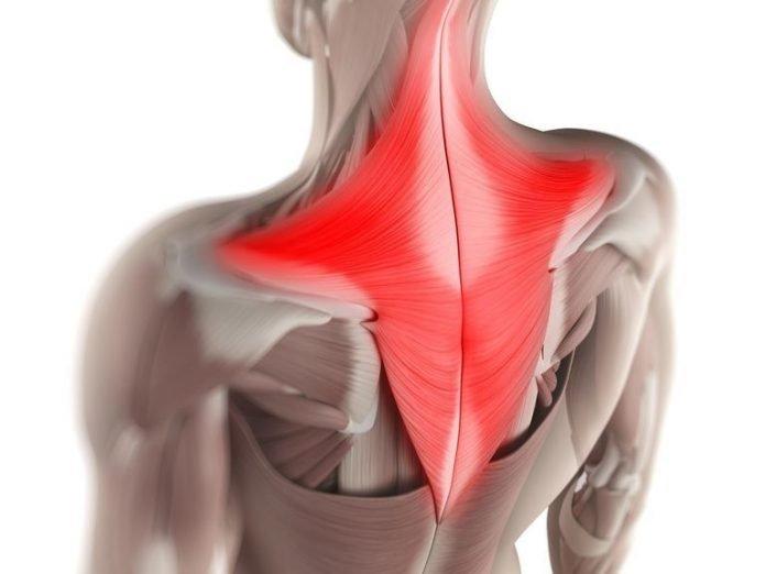 Мышечные зажимы шеи и спины: простое снятие боли изменением позы
