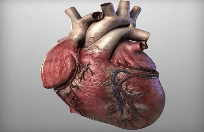Предотвратить сердечные заболевания помогут всего 4 столовые ложки этого средства