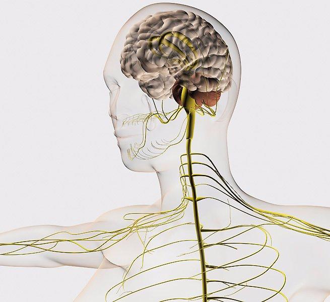 9 необычных упражнений, благодаря которым ваш мозг будет работать с небывалой продуктивностью!