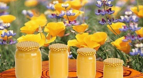 6 простых способов как отличить настоящий мёд от фальсификата. Не платите за непонятно что!