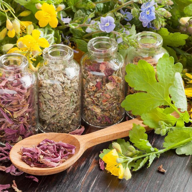 Научилась правильно применять противопаразитарные растения — здоровье на 1 месте!