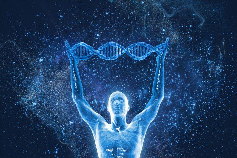 Любопытные факты из мира генетики. Это нужно знать и мужчинам и женщинам!