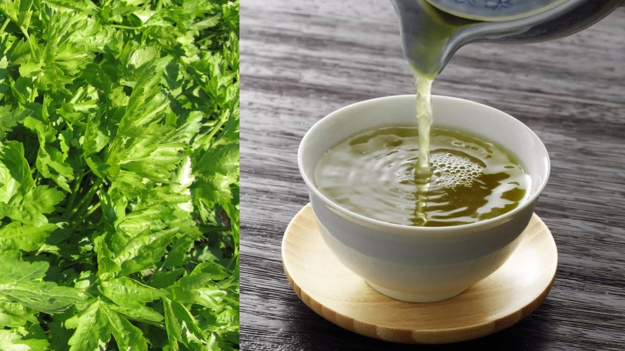 Обычная трава устранит токсины, бактерии и вредные вещества из организма