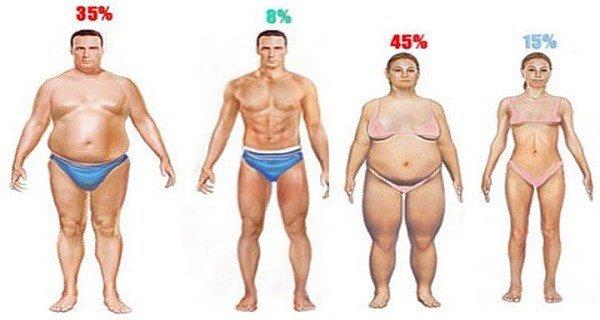 Растопим жир в организме с помощью 2 ингредиентов