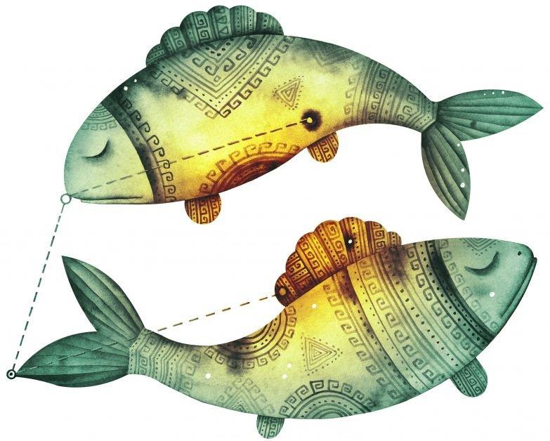 рыбы люди фото
