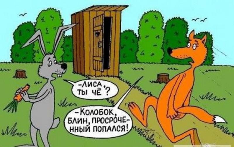 Анекдот Про Лису И Волка