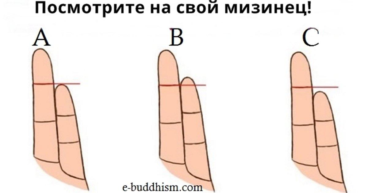 Как длина пальцев влияет на ваш характер