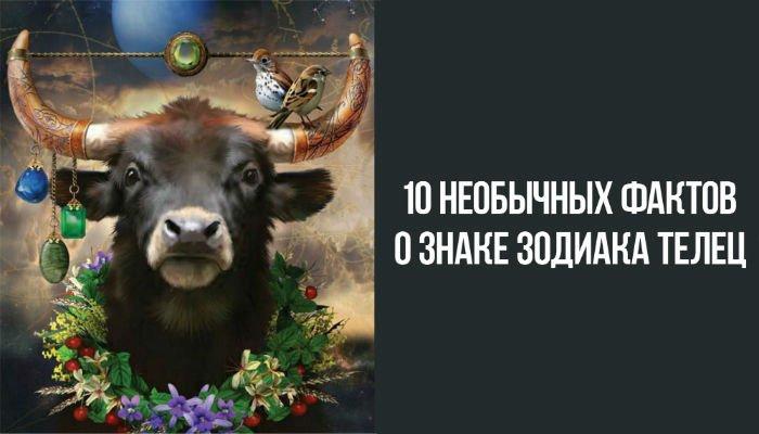 Необычные факты о знаке зодиака овен