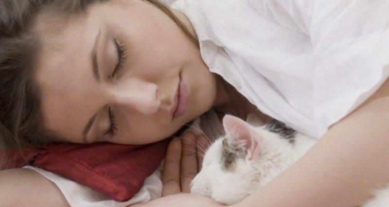 А вы тоже пускаете кота в свою кровать? Тогда вам стоит прочитать это!