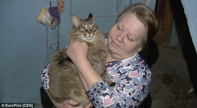Кошка заметила ребенка, брошенного на произвол судьбы, но тут произошло нечто невероятное!