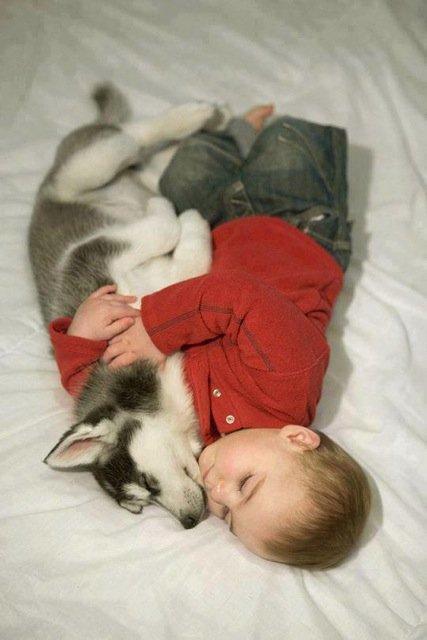 19 шикарных фото, доказывающих, что в жизни детей обязательно должны быть домашние животные