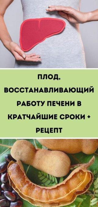 Плод, восстанавливающий работу печени в кратчайшие сроки + рецепт