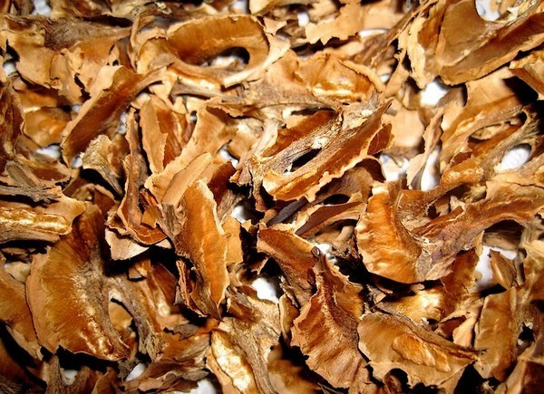 Обычные ореховые перегородки справляются с конъюктивитом, кистой, диабетом, радикулитом