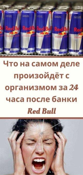 Что на самом деле произойдёт с организмом за 24 часа после банки Red Bull
