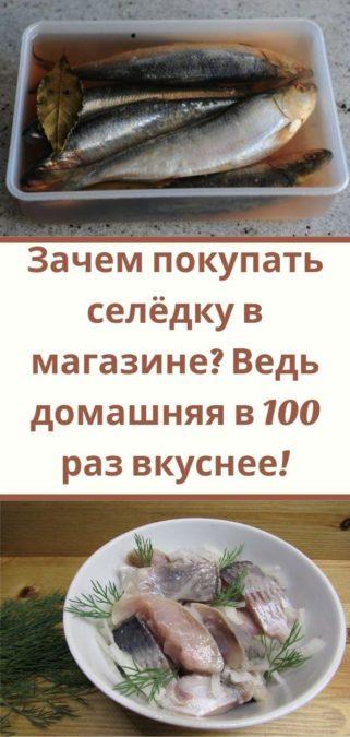 Зачем покупать селёдку в магазине? Ведь домашняя в 100 раз вкуснее!