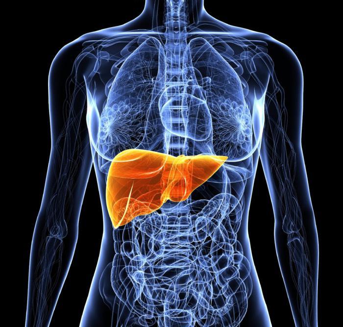 Детоксикация печени и организма по методу доктора Сарачоглу! Расщепляем жиры и выводим токсины!