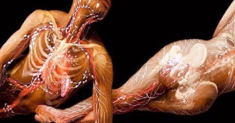 Какие процессы происходят в организме при малоподвижном образе жизни