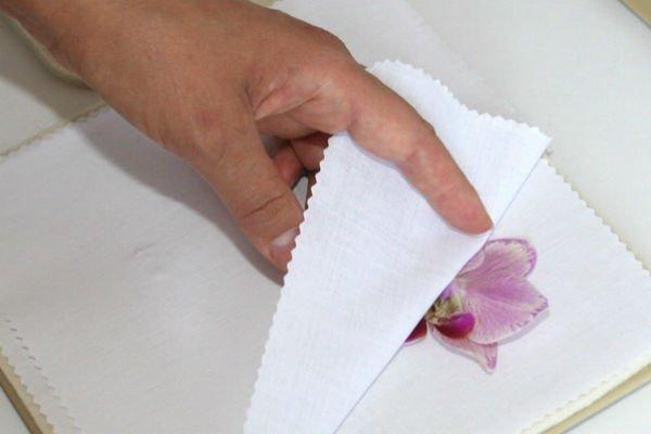 Магическое значение орхидеи в доме. Вы даже не представляли, что она может принести