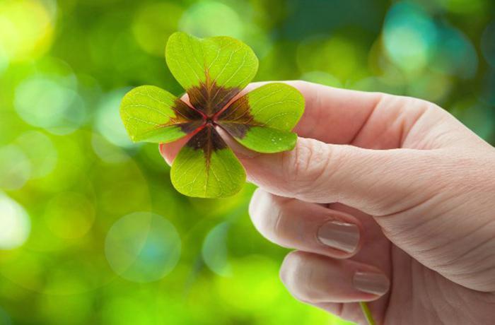 8 проверенных признаков, что скоро в вашу жизнь постучится удача!