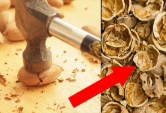 Когда вы прочитаете это, вы больше НИКОГДА не будете выбрасывать ореховую скорлупу. ТАЙНА, которую вам стоит знать!