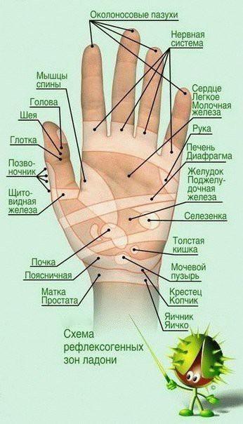 Правильный массаж снимет боль и улучшит Ваше здоровье