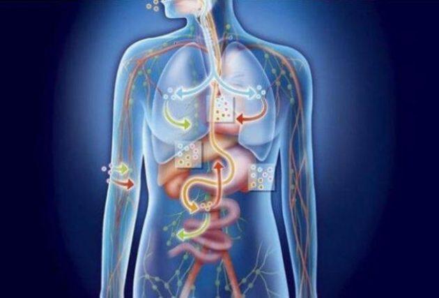 Следствием большинства болезней является высокий уровень кислотности организма. Вот 10 способов восстановить баланс!