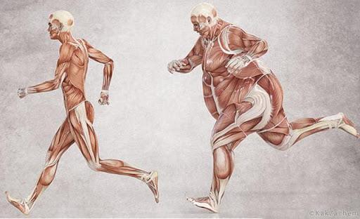 Простая настойка улучшит работу щитовидки, избавит от холестерина, лишнего веса и не только!