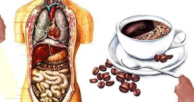 Эту статью нужно обязательно прочитать всем, кто пьёт кофе утром на пустой желудок!