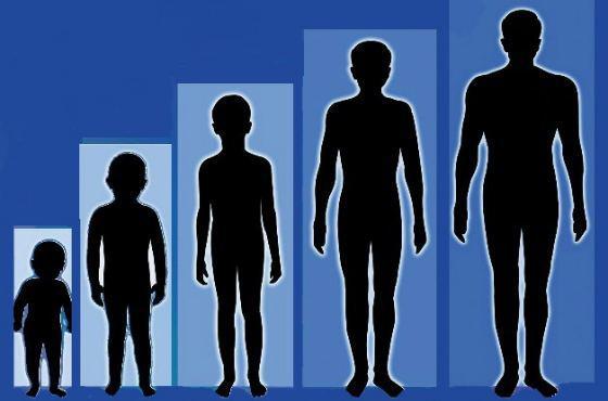 Как правильно и безопасно увеличить рост подростка: упражнения и питание