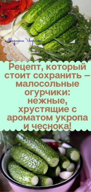 Рецепт, который стоит сохранить — малосольные огурчики: нежные, хрустящие с ароматом укропа и чеснока!