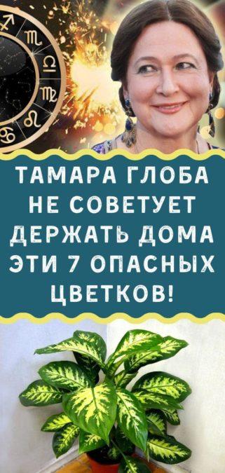 Тамара Глоба не советует держать дома эти 7 опасных цветков!