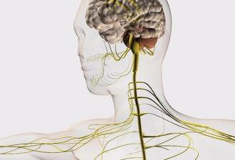 9 кинезиологических упражнений, которые заставят мозг работать на полную мощность