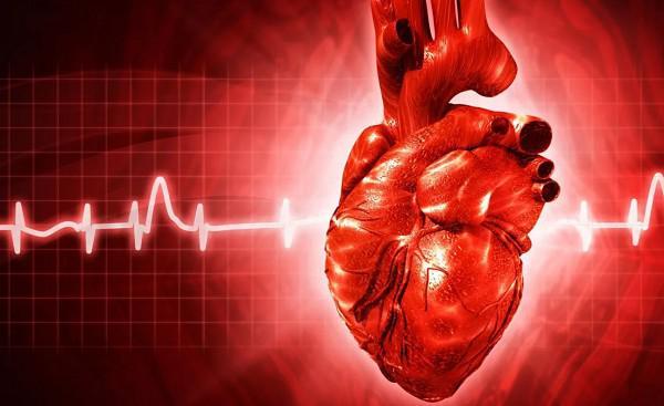 Внезапная остановка сердца: правила оказания первой помощи. Как спасти жизнь человеку