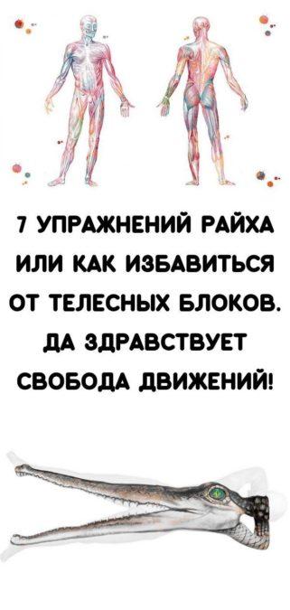 7 упражнений Райха или как избавиться от телесных блоков. Да здравствует свобода движений!