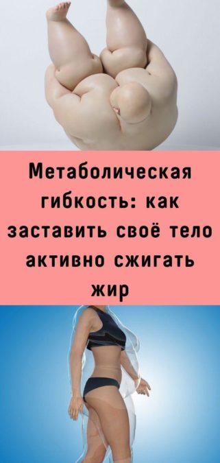 Метаболическая гибкость: как заставить своё тело активно сжигать жир