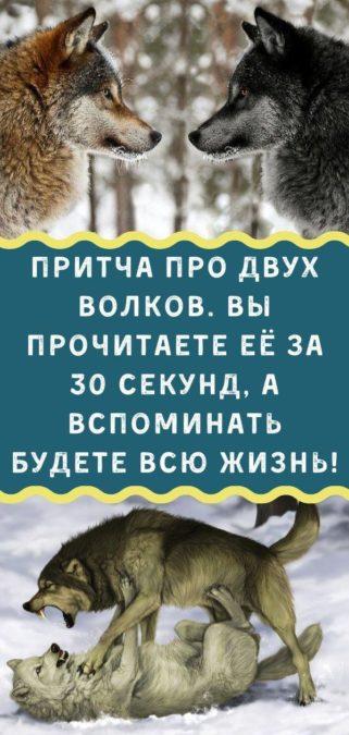 Притча про двух волков. Вы прочитаете её за 30 секунд, а вспоминать будете всю жизнь!