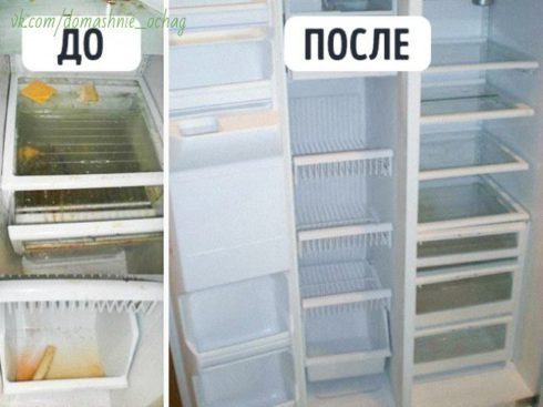 14 простых способов сделать вашу кухню идеально чистой
