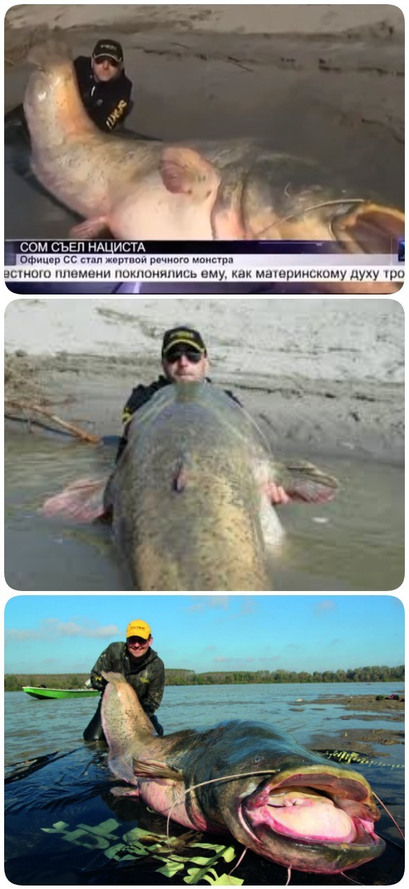 2 рыбака из Польши обнаружили останки нациста в животе 100-летней рыбы!