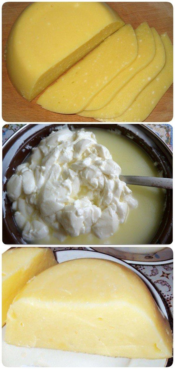 Как сделать твердый сыр в домашних условиях: абсолютно здоровый и без химии