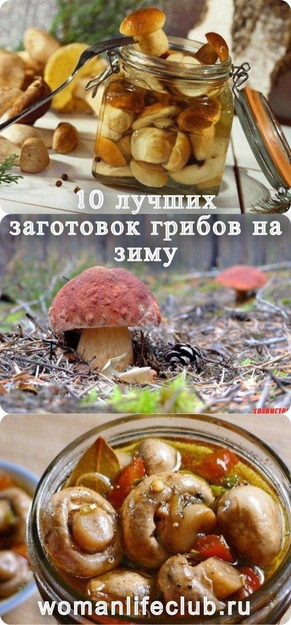 10 лучших заготовок грибов на зиму