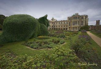 Самый необычный парк на планете, в котором все кусты сделаны в виде котиков