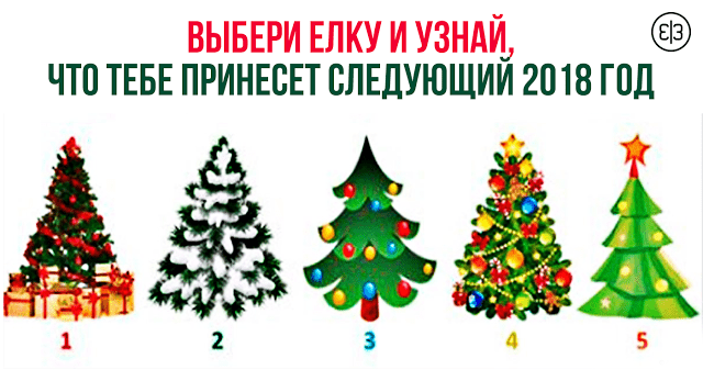 Выбери ёлку и узнай, что тебе принесёт следующий год!