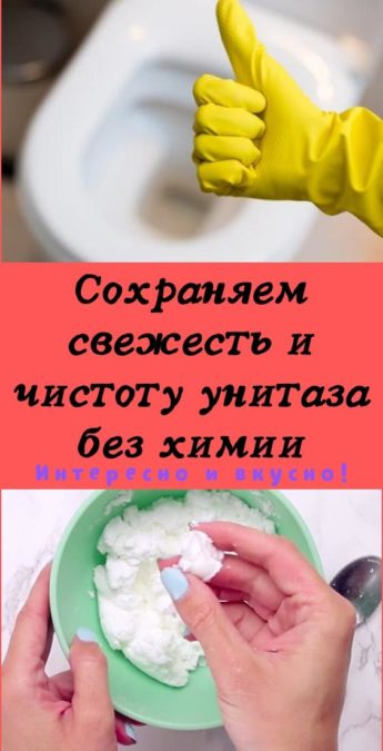 Сохраняем свежесть и чистоту унитаза без химии