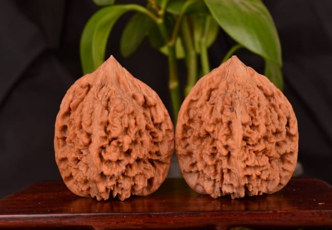 Ореховая скорлупа лучшая для профилактики тромбов.